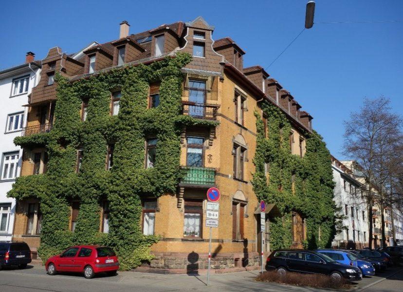 Grün statt Grau! Fassadenbegrünung in der Karlsruher Oststadt