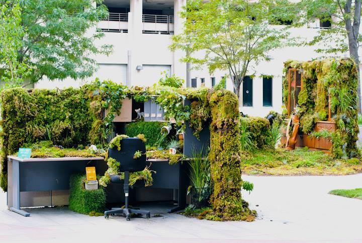 Grüner Schreibtisch